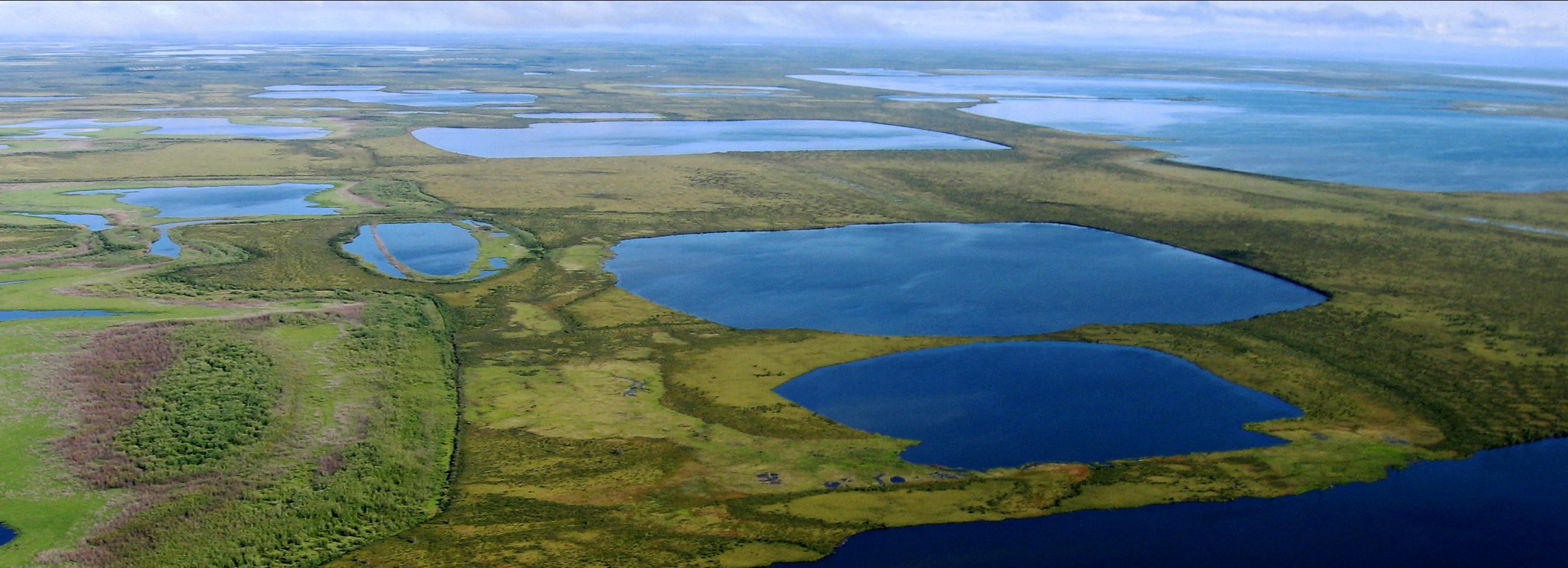 Controls on the erosion of thermokarst lakeshores