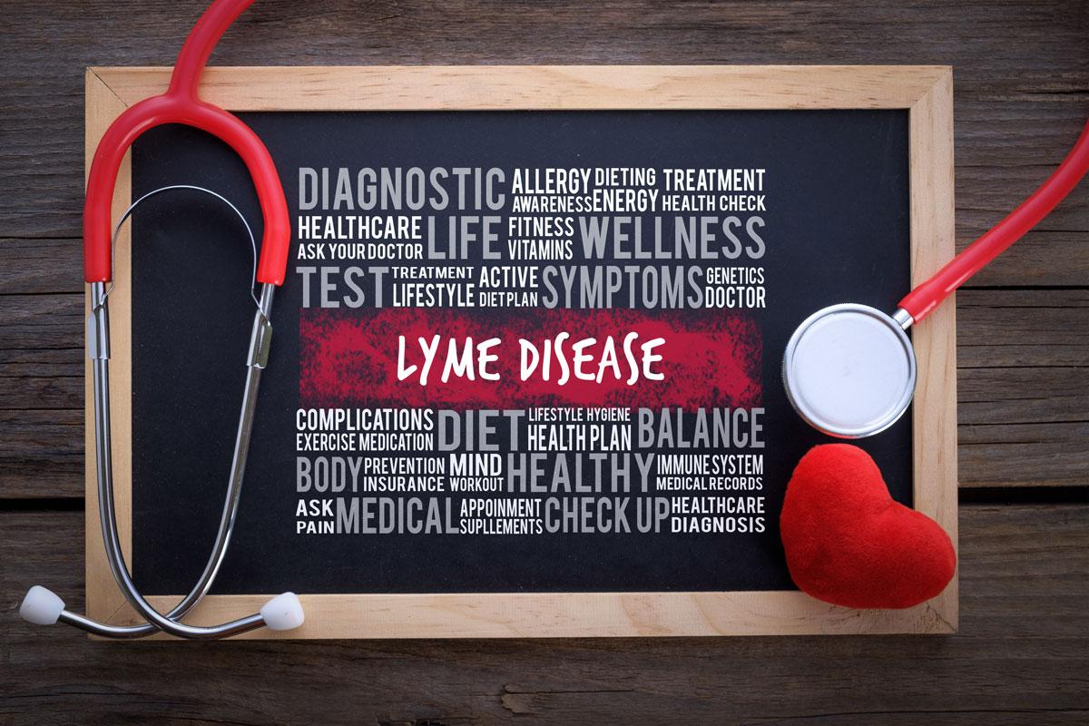 Lyme Disease – EnviroMed Clinic