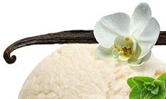 Vanilla spice ice cream scoop