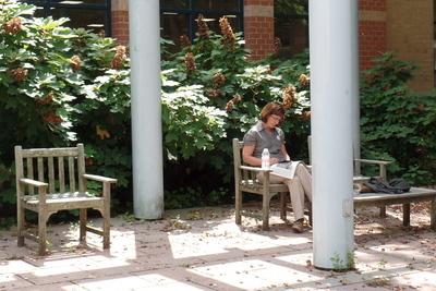 outdoor reading garden
