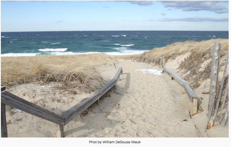 Metro Source Beach Pic