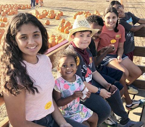 pumpkin patch school trips