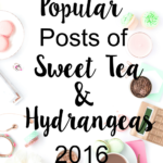 Most Popular Posts of STH 2016
