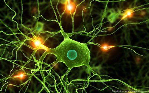 Biology GPA For Transfers 2016 – Riverside, Santa Cruz, Merced