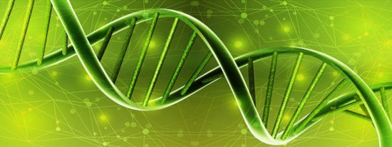 Biology GPA For Transfers 2016 – Berkeley, UCLA, San Diego