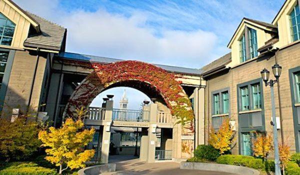 Haas School Of Business