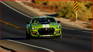 AutoInformed.com on Mustang