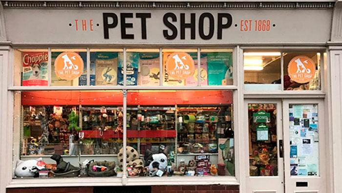 Não tem um pet shop no meu bairro.   Inglês BÁSICO Todos os Dias #119