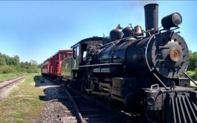 Espero que esse velho trem quebre… | phrasal verb 'break down' | Inglês Todos os Dias #469