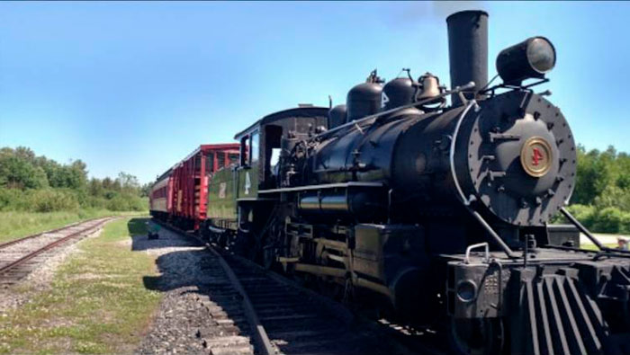 Espero que esse velho trem quebre…   phrasal verb 'break down'   Inglês Todos os Dias #469