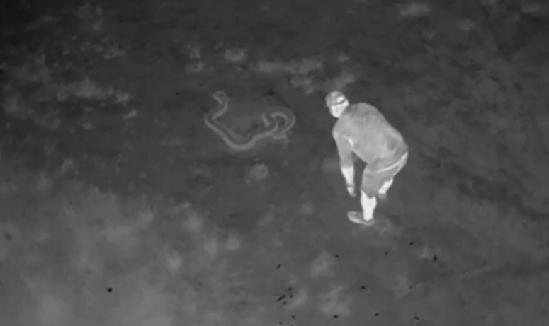 Infrared Drone