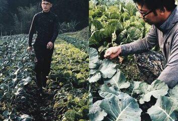 小瓢蟲有機農場  ,第二代青農齊打拼