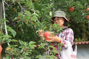 日本農業參訪(三)