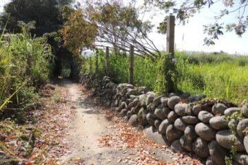 東勢石圍墻遺跡