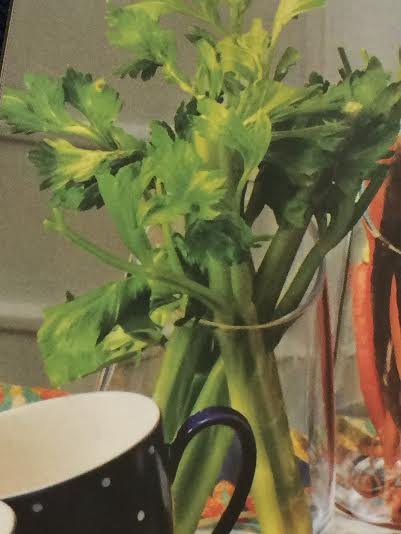 Celery Vase featured in Bloomingdale's catalog