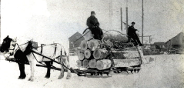 Cutting The Great Timber – 1870