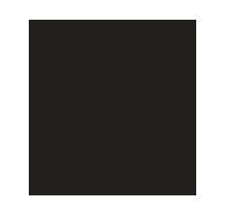 Magnus Vinum Society logo