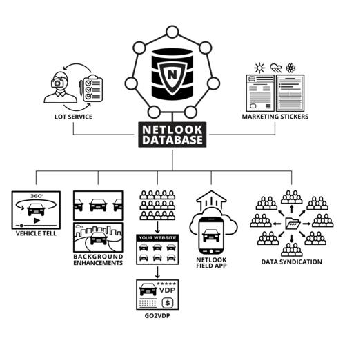 our-platform-infographic-V5