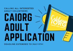 CAIORG Adult Application