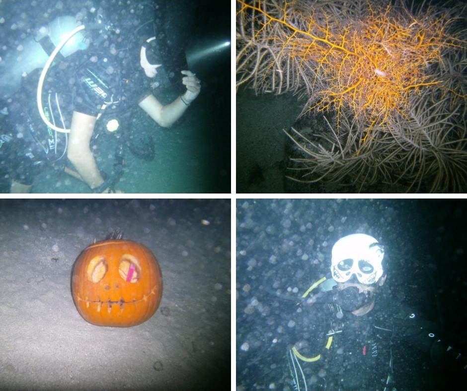 Halloween Night Dive