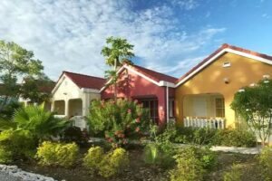 Livingstone Curacao