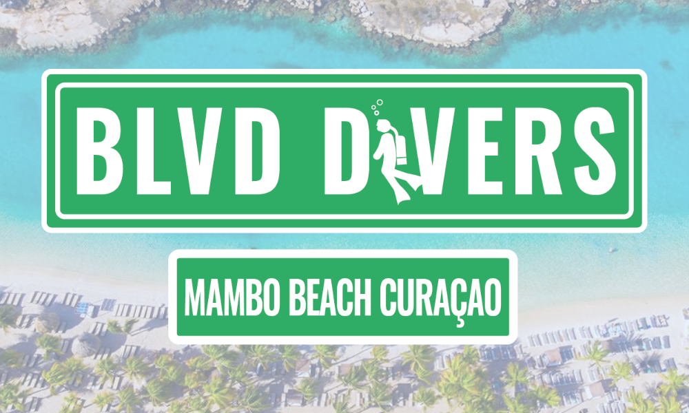 BLVD Divers Mambo Beach