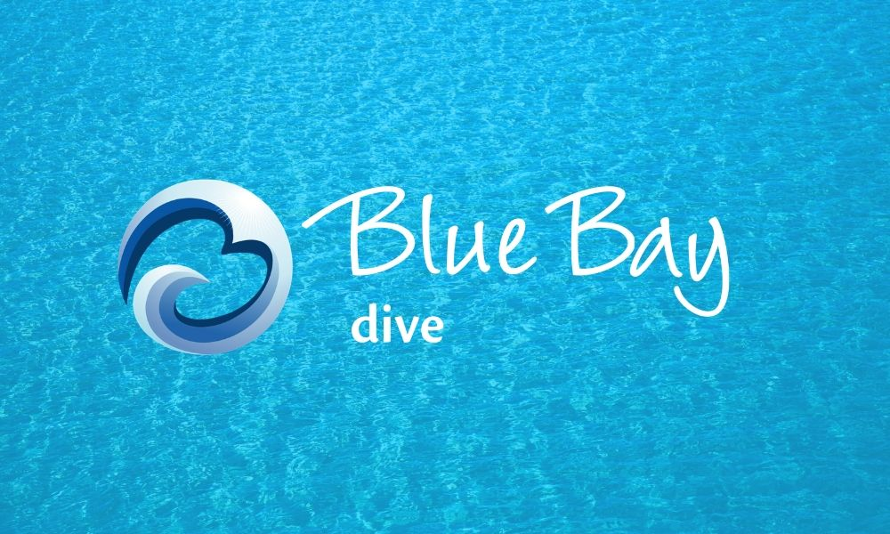 Blue Bay Dive Curacao