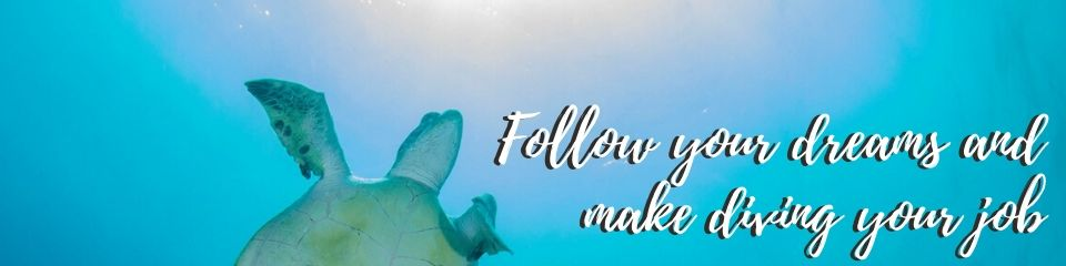 Follow you dreams and make diving your job