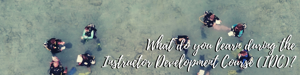 What do you learn during the IDC?