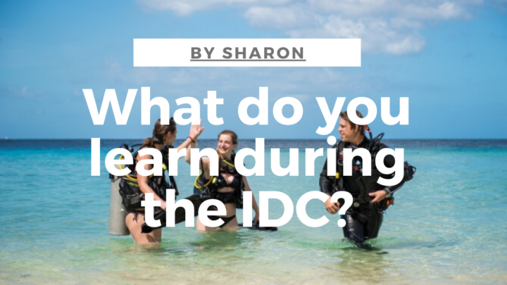 What do you learn during the idc