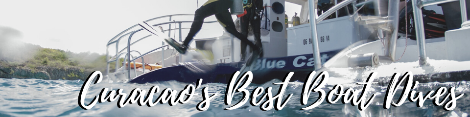 Curacao's beste boat dives