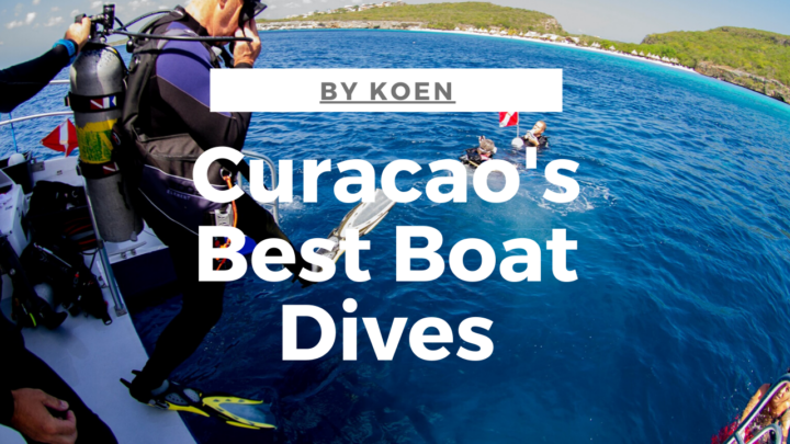 Curacao's best baat dives