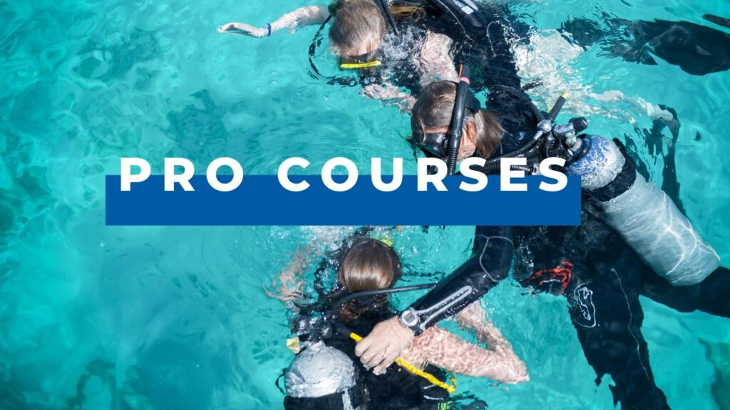 dive pro courses
