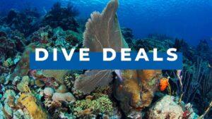 dive deals curacao