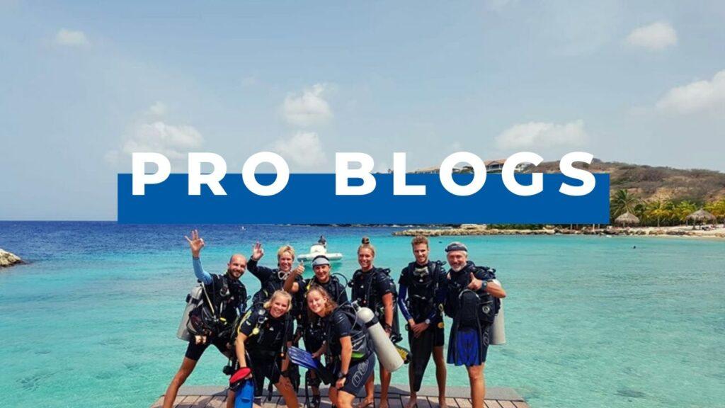 Dive Division Pro