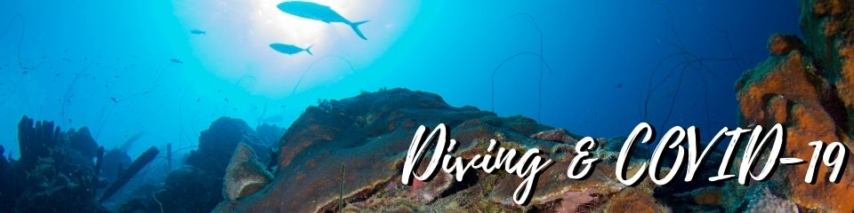 Diving & Covid-19