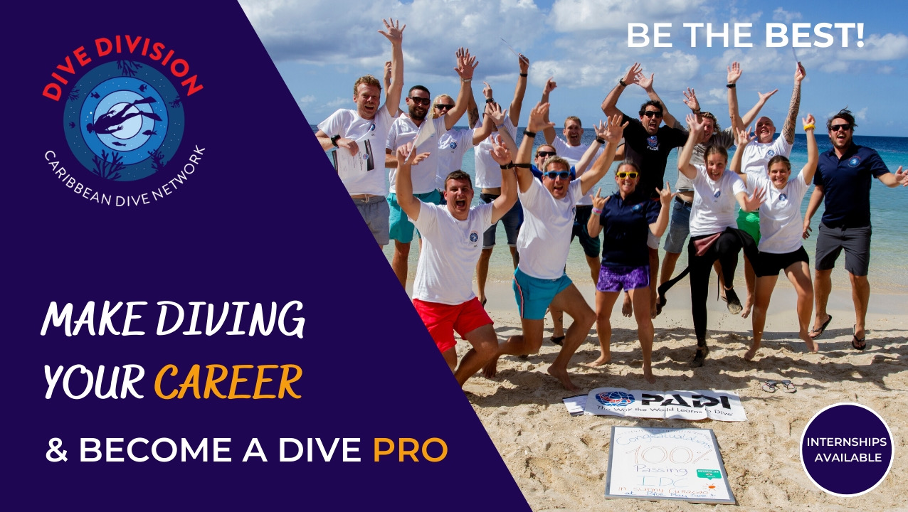Make diving your career