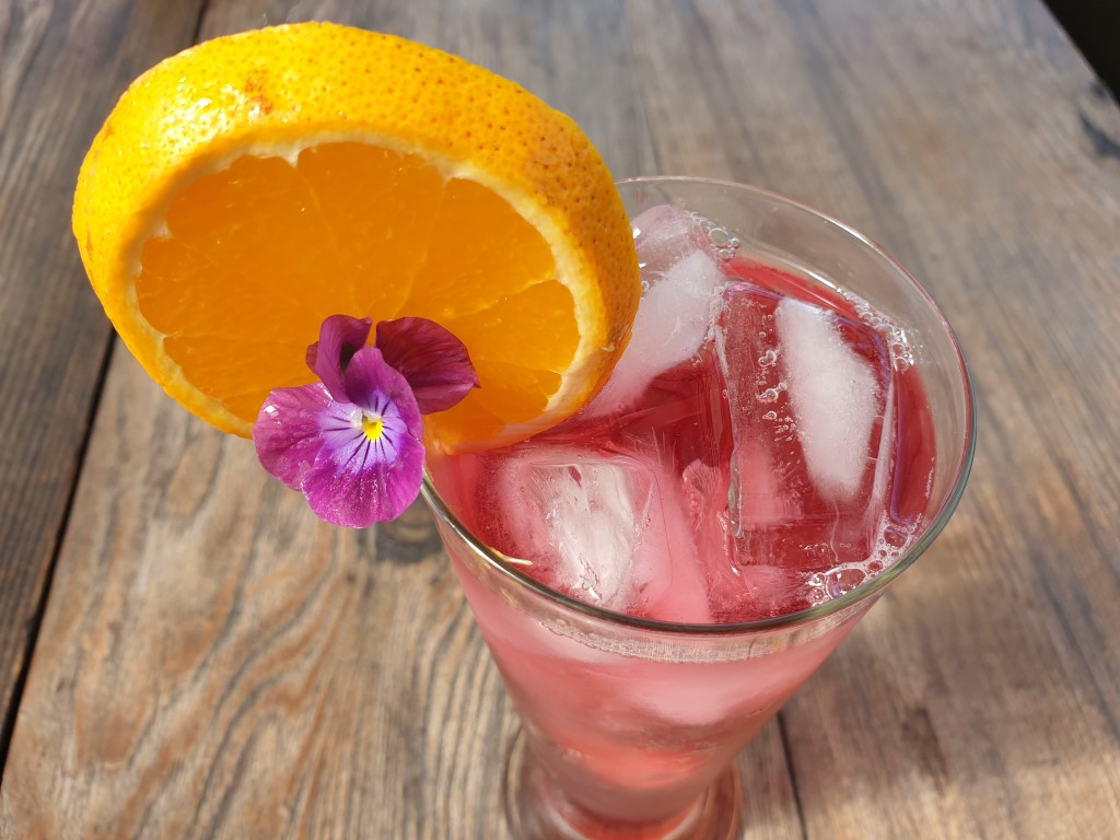 Hibiscus & Elderflower Spritzer