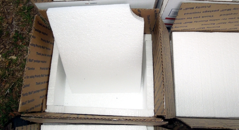 Styrofoam liner installed within a USPS 6x7x7 Priority Mail Box