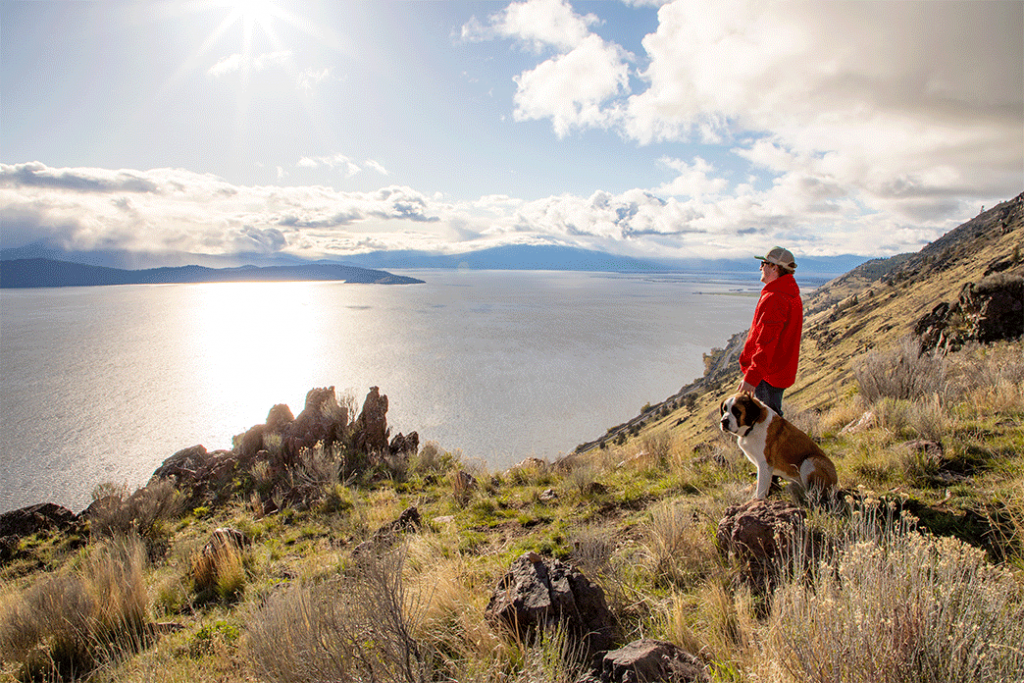 A man in a bright red jacket and hat with his saint Bernard dog at a scenic vista point on Hagelstein Mountain overlooking the Upper Klamath Lake located just off Hwy 97 just north of Klamath Falls, Oregon.