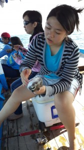 Mancing ikan buntal di karang Keroya | Fishing-Mancing.com