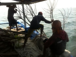 Fishing-Mancing.com sedang melepaskan rumpon dari batang pohon ke laut. Call 0818828526