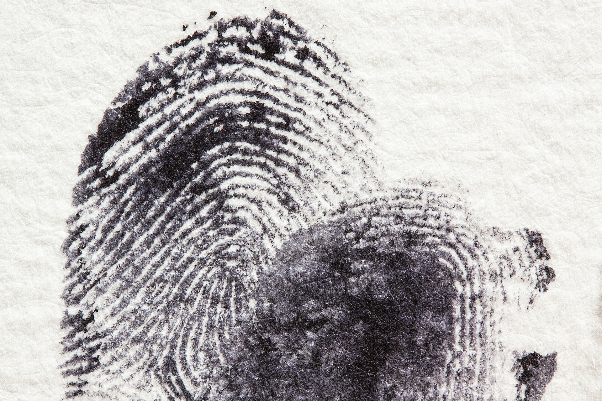 Ink Card Fingerprinting