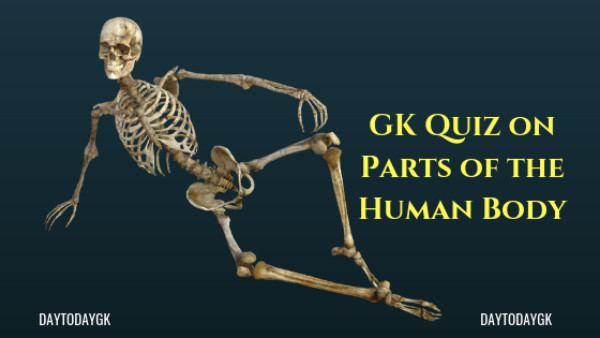 GK Quiz on Parts of the Human Body