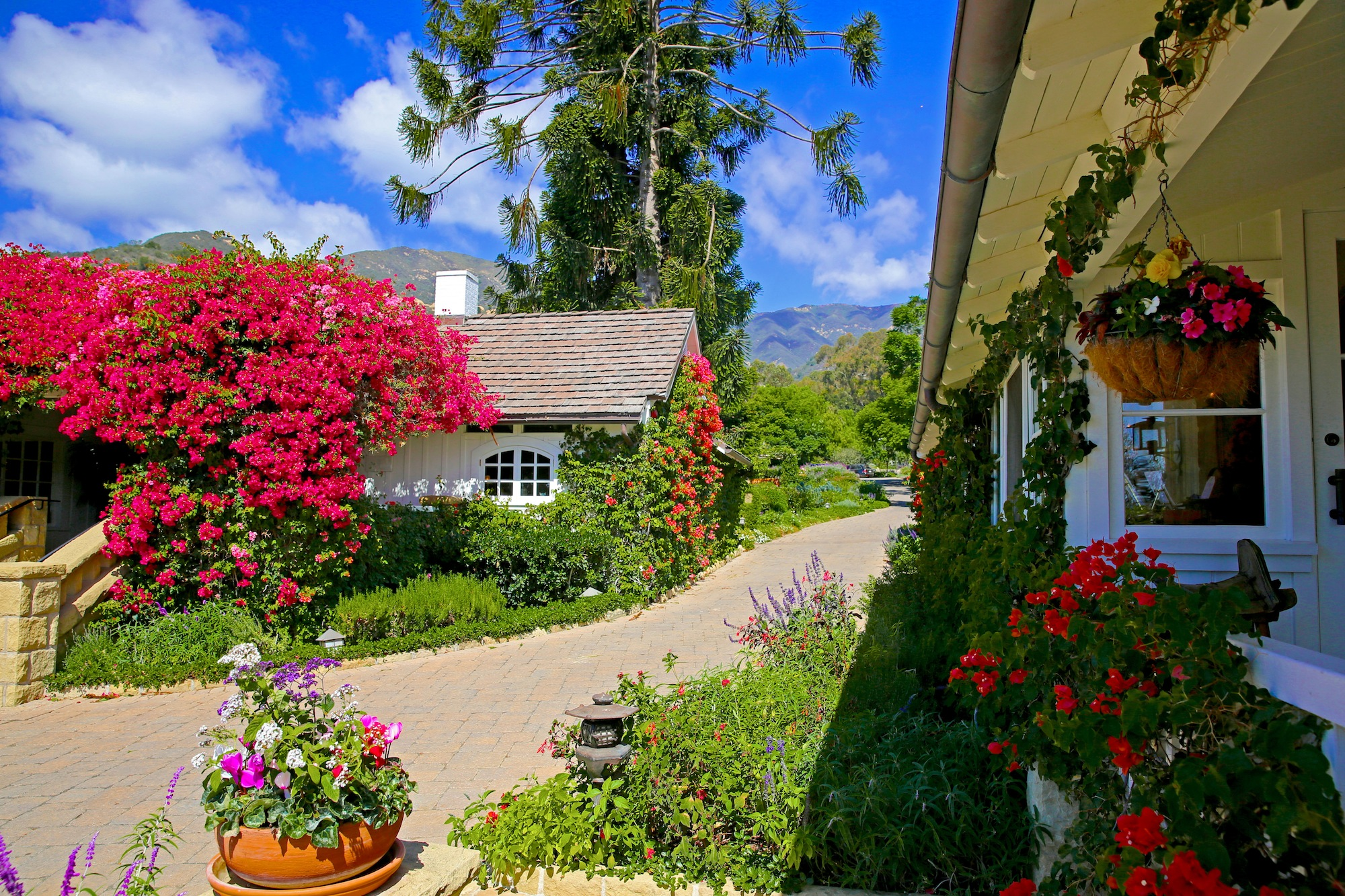 Wine Country Vacations