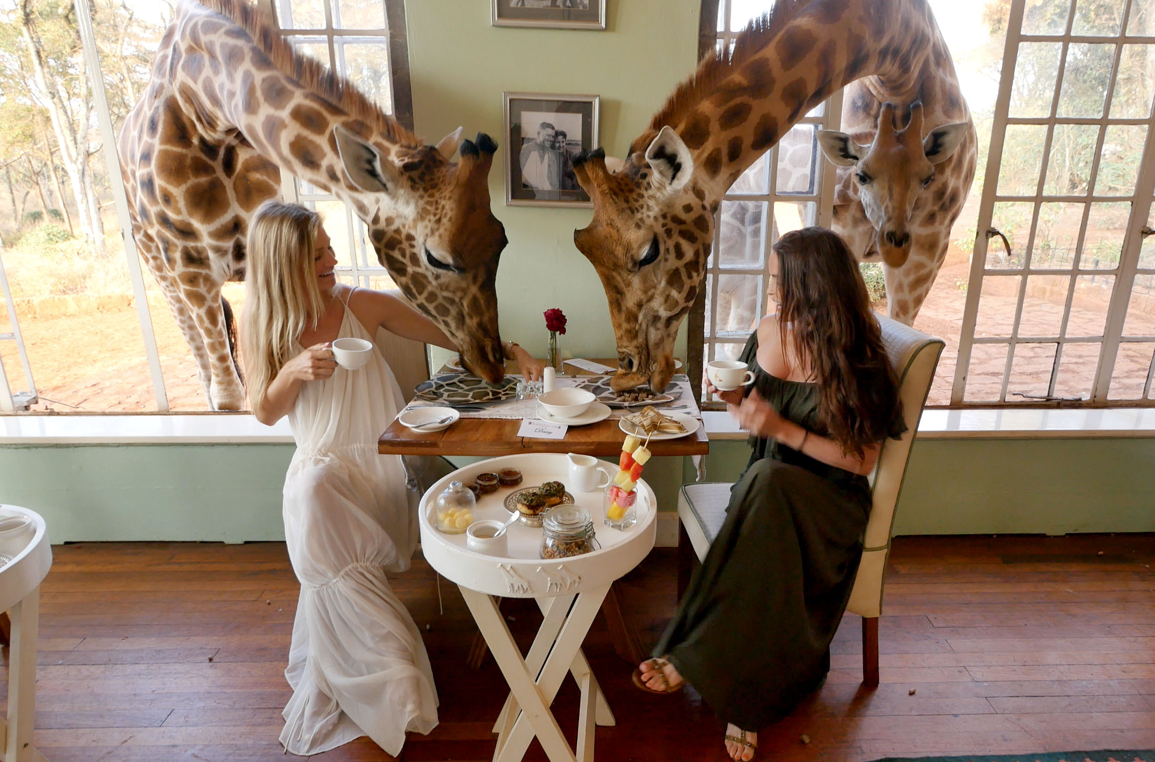 Giraffe Manor Dining
