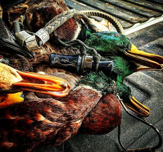 Lead Head Waterfowl