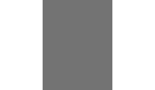 Logo D1