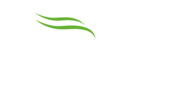 Oakville Hair Salon| Hair Salons, Burlington, Beauty Salon, Hair, Hair Salon,  Mint Hair Studio, Hair Stylist, Curls, Coloring