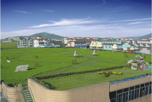 Greening Solution Offers Certified Green Roof System